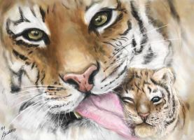 Tiger and Cub by Pandoras-Encore