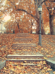 Autumn stairs by reaperfoxgirl