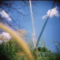 Pensive Afternoon by lomocotion