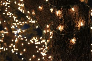 Christmas Lights04 by ncRabbit