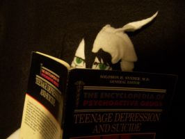 Ulqui reads my psych books by EvilZombieDove