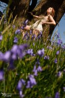 more bluebells by Arielle-Fox