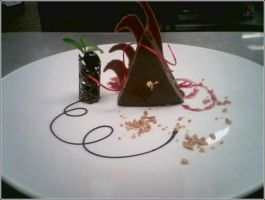Chocolate Mousse Triangle by Chef-Gothique
