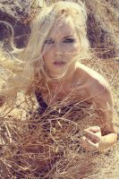 Wheat by fae-photography