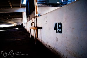 Number 49 by creynolds25