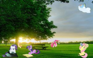 Mane 6 At The Park by Macgrubor
