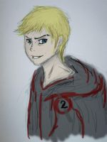 District 2: Cato by bellybearz
