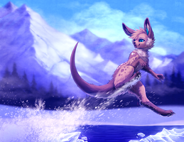 Ice Skips by falvie