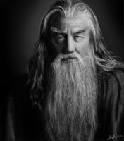 Gandalf the gray portrait by Suc-of