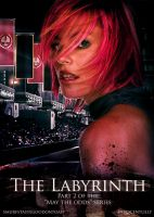 The Labyrinth- A Hayffie fanfiction by SimpleLittleDreamer