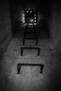 The escape from insane by C-Asepsis