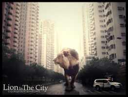 Lion In The City by d7mooni