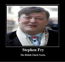 steven fry by no-higgins