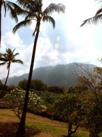 Makaha Valley in Summer by GemSterling