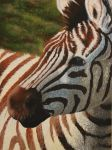 Painting: Zebra by ShineOverShadow