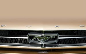 Ford Mustang by joerayphoto