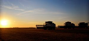Combines ready for harvest by bacardi870