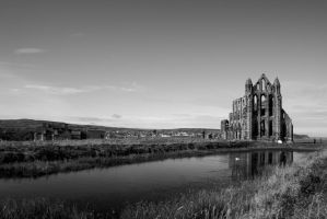 Whitby Abbey and Pond, Monochrome by astrogoth13