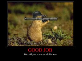 Bazooka Squirrel by GeneralLee1807