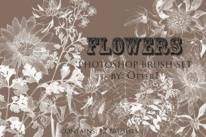 Flowers brush set by otter1