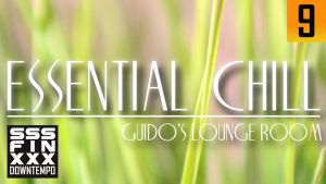 BEST Essential Chill - Guido's lounge room by AndreiPavel