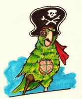 Pirate Parrot Marker Doodle by JollyGorilla