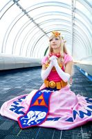 Toon Zelda I by EnchantedCupcake