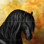 Friesian    by odpium