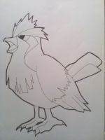 Pidgey Drawing-Lineart by Krizeii