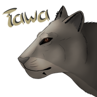 Tawa the lioness by Snowgard