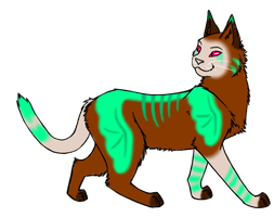 Free Cat Adoptable by Closet-Furry