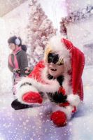 Miraculous Ladybug and Chat Noir (Merry Christmas) by Tushkanchik666