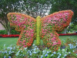 Butterfly Topiary by phantaz
