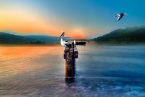 Pelican Bay by SharonLeggDigitalArt