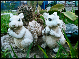 """""""Critters"""" in -The Garden- by Magic-Artist"""