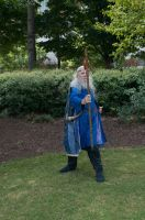 2014-08-31 Wizard in Park 05 by skydancer-stock