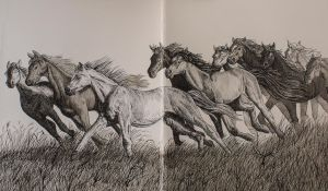 Running Horses by hydraa