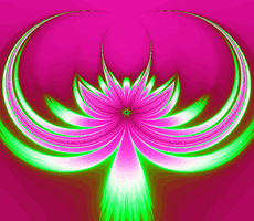 Fractal Flower2 by infinityfractals
