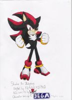 shadow the hedgehog drawing 2 by nothing111111