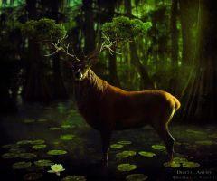 Forest King by BaltasarVischi
