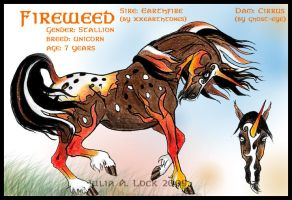 IHS Fireweed by IronHill-Stables