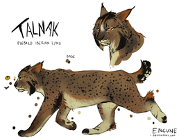 Talnak Reference by encune