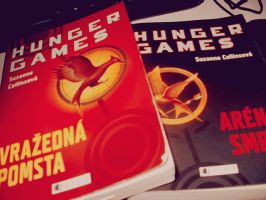 hunger games my fave Right now by Pauline-graphics