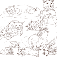 Cat Studies by F4Zero
