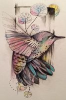 Hummingbird by Mvraymer12