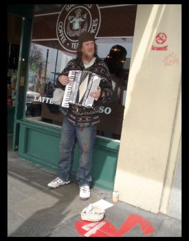 accordian player by thecailynn