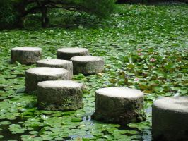 Stepping Stones by Ekuboryu
