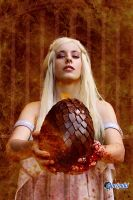 Fire and Blood by MrsFoxie