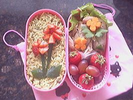 Hana Bento by Precious-Love