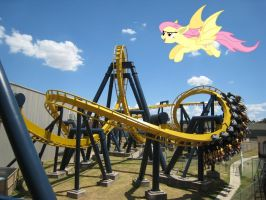 Flutterbat - Six Flags Over Texas USA by Phi1997